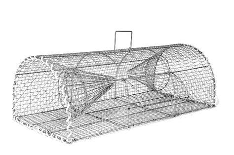 botanic siege caisse à pêche piège à crevettes piège à vairons nasses