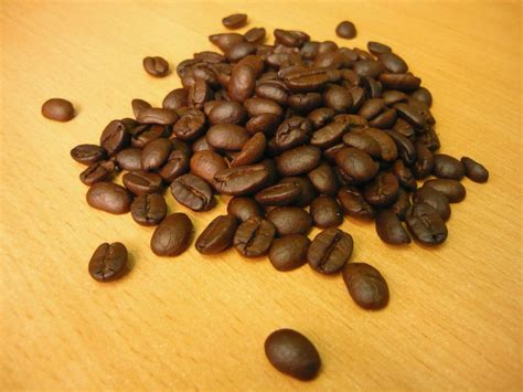 Roasted Arabica Coffee Beans Diy Pallet Coffee Table Wheels Luwak Making Process Most Expensive Iced At Starbucks In Kl Drink The World La Jakarta White