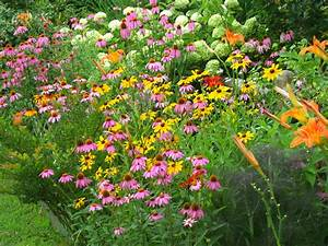 Butterfly Gardening - Best Home Decorating Ideas
