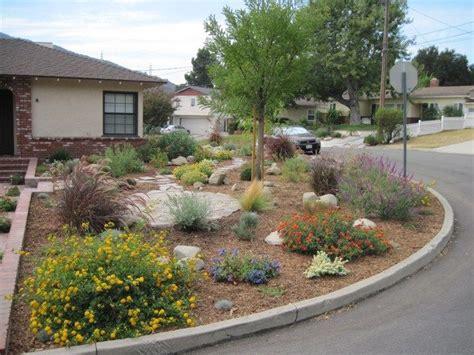 25 best ideas about drought tolerant landscape on