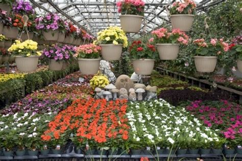 plant nursery nj thenurseries