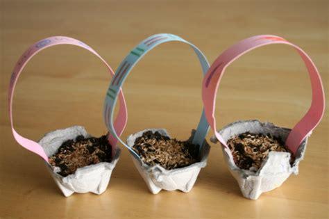 growing easter grass  egg carton baskets   takes