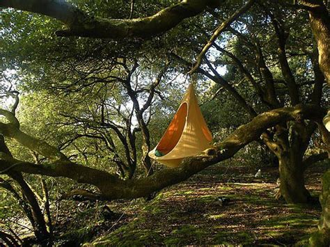 cozy cacoon  part hammock part tree tent  fun