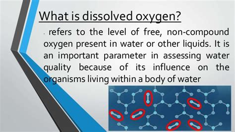 what is oxygen dissolved oxygen