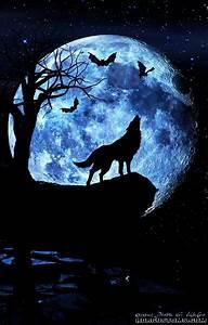 17 Best images about Wolf Moon Esbat on Pinterest   Spirit ...