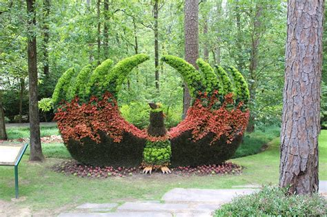 garvan woodland gardens garvan woodland gardens 6 attractions and activities for