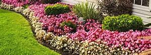 amenagement jardin photos meilleures images d With amazing amenager un jardin paysager 12 amenagement de jardin terra flore