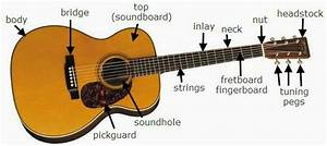 Ghs Guitar  Know Your Guitar