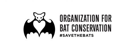 the organization for bat conservation obc