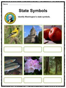 washington state bird facts washington state facts worksheets historic information for