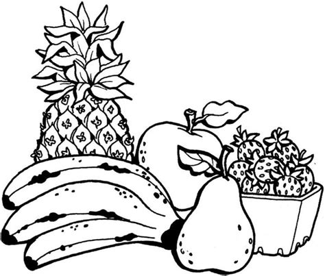 coloring  blog archive fruit coloring pages