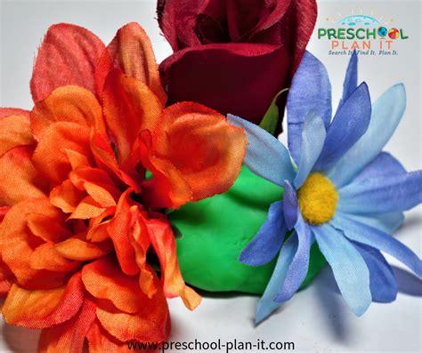 growing flowers preschool theme 777 | growing flowers flowerarranging
