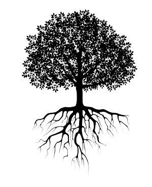 tree_roots2 - Stewardship Capital