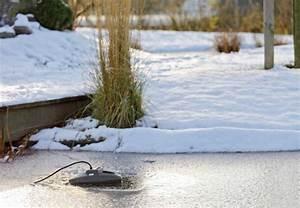 Teich Winterfest Machen : mit den tipps von obi wird der gartenteich garantiert winterfest ~ Buech-reservation.com Haus und Dekorationen