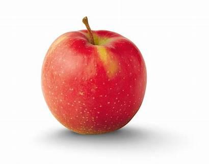 Apple Apples Benefits Eating Health Varieties Fruits