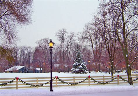 snowy field  christmas  stock photo public domain