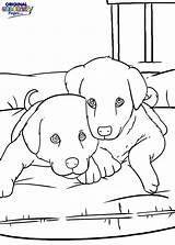 Bed Coloring Pages Getcolorings Printable Puppies sketch template