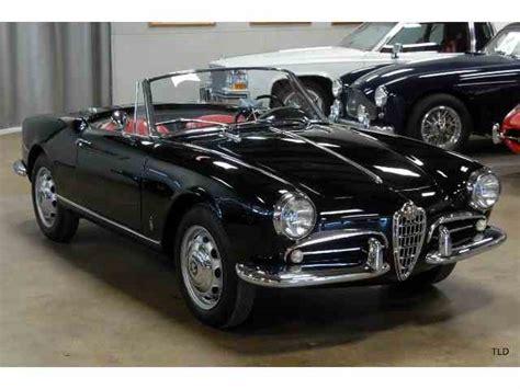 Vintage Alfa Romeo by Classic Alfa Romeo For Sale On Classiccars