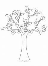 Tree Coloring Pages Cherry Banyan Baobab Colouring Drawing Trees Printable Getcolorings Sp Getdrawings Banya sketch template