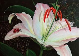 Blumen Bilder Gemalt : lilie ~ Orissabook.com Haus und Dekorationen