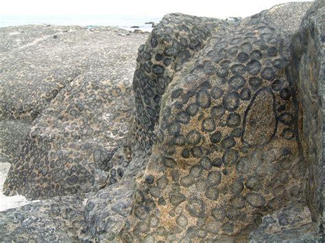 file 2005 11 08 005 granito orbicular caldera chile jpg