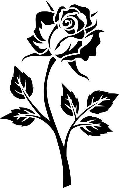 blume rose kontur kostenloses bild auf pixabay