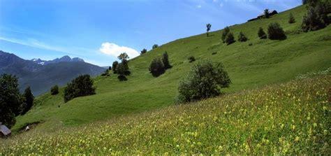 chambre d agriculture aude argelès gazost quelle sera la plus prairie fleurie