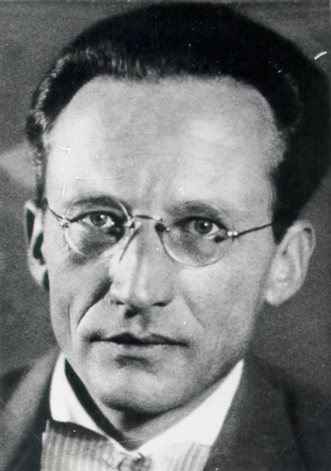 From Erwin Schrodinger Quotes. QuotesGram