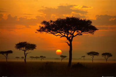 dreaming   african sunset  posted  african home