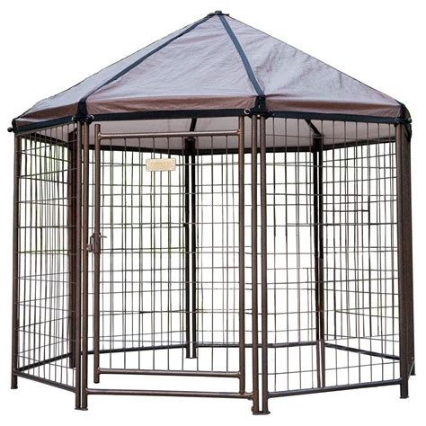 outdoor kennel low profile 5 ft outdoor pet gazebo kennel 23200