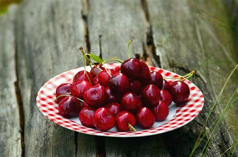 image libre cerise fruits nourriture printemps
