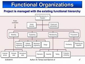 Functional Organization  The Advantages And The Disadvantages