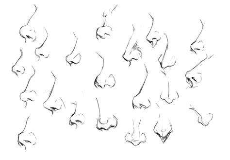 Noses, Figures, And Motivation