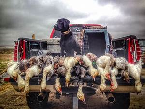 Duck Hunting Daily Pit Leases