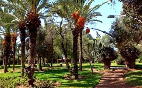Le Jardin D'olhao  Agadir  Ville  Maroc Trip, Voyage Et