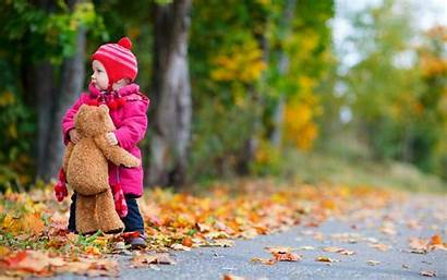 Nature Bear Autumn Child Toy Leaves Wallpapers