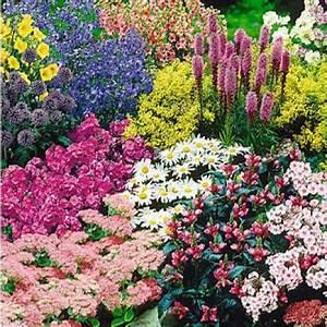 Blumenbeete Zum Nachpflanzen : drei staudenbeete einfach nachgepflanzt garden planning gardens and plants ~ Yasmunasinghe.com Haus und Dekorationen