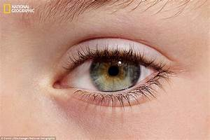 Stunning Eye Pictures Reveal The Incredible Diversity In