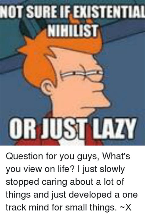 Nihilist Memes - not sure if existential nihilist or just lazy question for you guys what s you view on life i