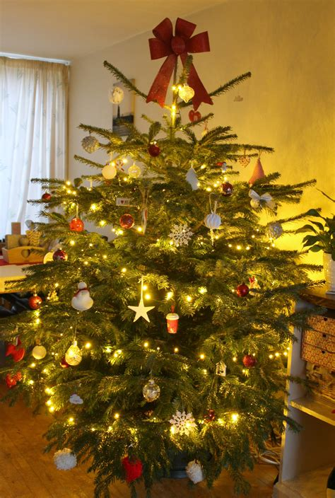 decorate  real christmas tree