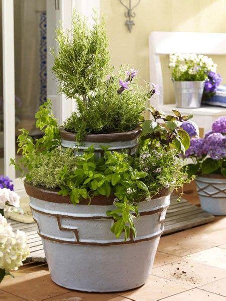 Balkon Gemüse Pflanzen by Gem 252 Se Und Kr 228 Uter Auf Dem Balkon Balkon Garden