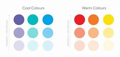 Palette Colour Brand Things Warm Cool Choosing