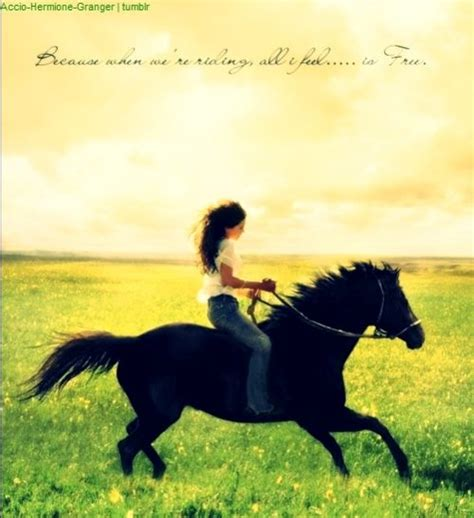 flicka horse quotes feel riding am horses movie because re movies wattpad pretty equestrian quote