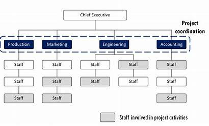 Functional Organizational Organization Structures Example Pmp Project