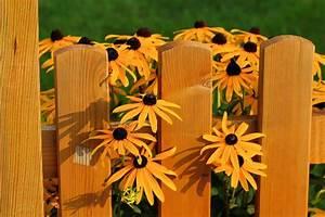 Welches Holz Für Gartenzaun : material f r den zaun welches ist das beste ~ Lizthompson.info Haus und Dekorationen
