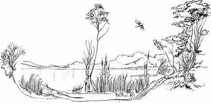 Pond Clipart Scenery Duck Clip Fish Clipground