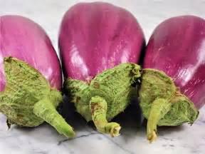 eggplant Rosita
