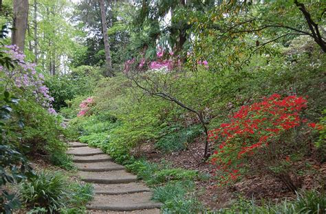 maryland garden 9 secret spots in maryland where nature will completely relax you