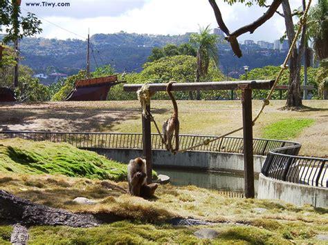 Tiwy.com - Parque del Este, Caracas