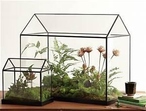 Acheter Terrarium Plante : terrarium a faire soi meme teciverdi ~ Teatrodelosmanantiales.com Idées de Décoration